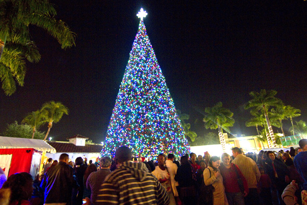 The countdown is under way for the lighting of the cityu0027s 100-foot Christmas tree. & Jaclyn Stapp to Read to Over 30000 at Delray Beach Tree Lighting ...